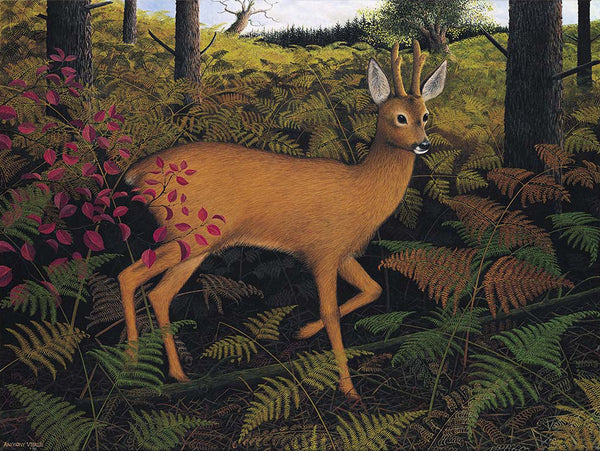 Pack of 4 Roe Deer in Deep Cover Greeting Cards