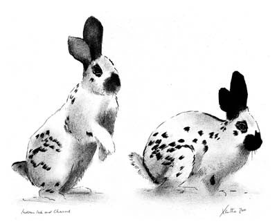 'Rabbits' A3 giclee print by artist Xanthe Mosley. £45.  From a range of prints at The Prints Gallery