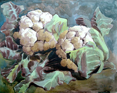 'Two Cauliflowers' A3 giclee print by artist Xanthe Mosley. £45.  From a range of prints at The Prints Gallery
