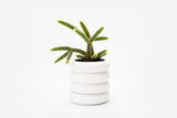 Areaware White Stacking Planter