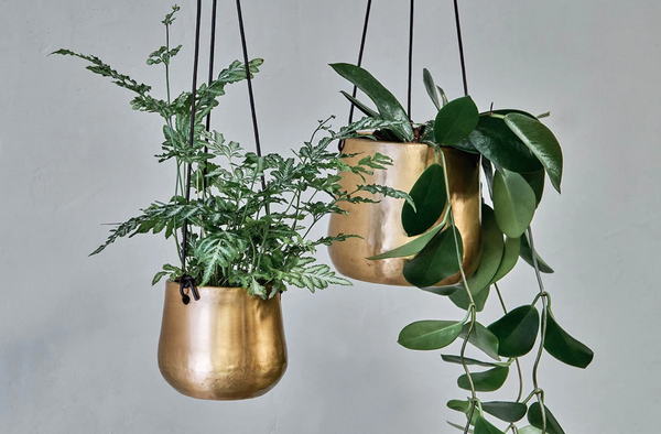 Atsu Small Brass Hanging Planter from Nkuku