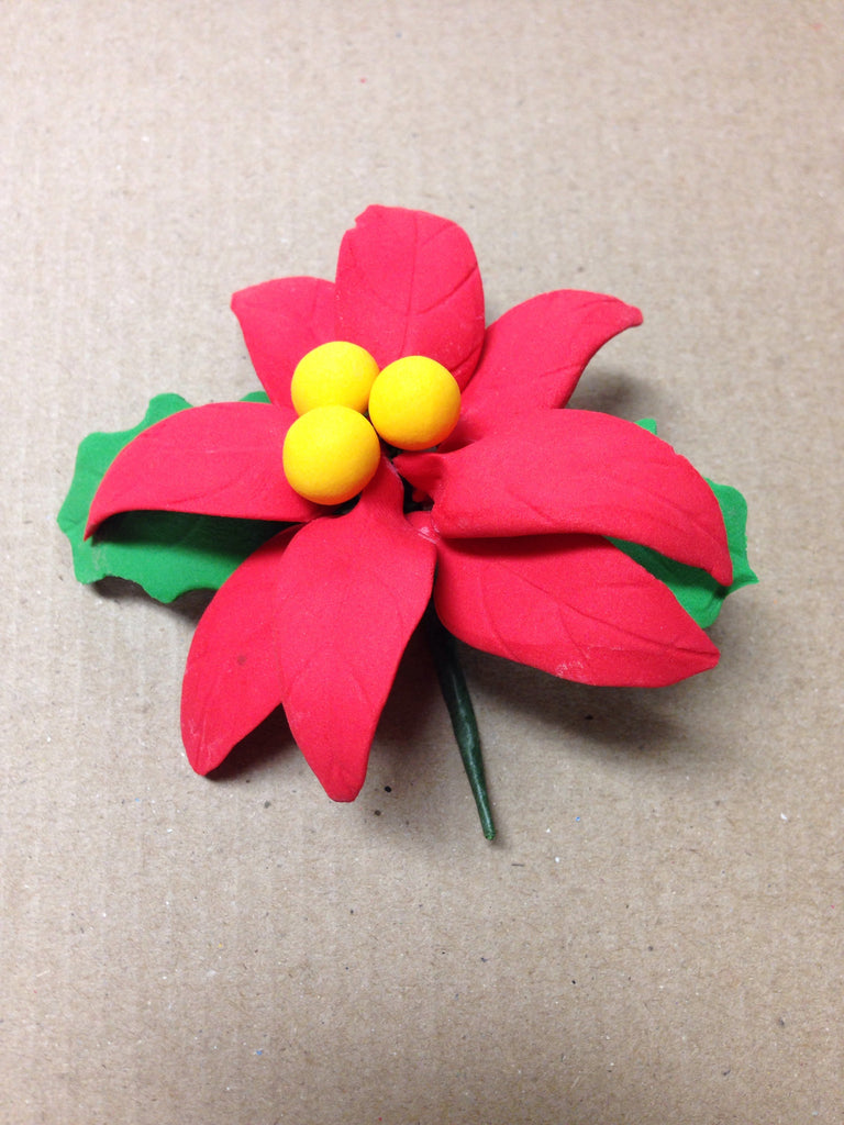 Poinsettia Flower with Leaf
