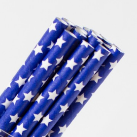 Navy with White Star Straws