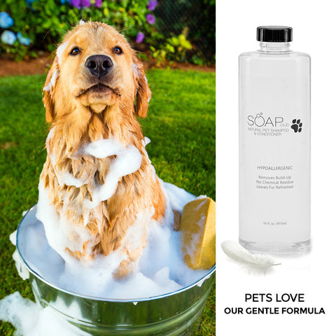 Pet Spa Natural Hypoallergenic Shampoo & Conditioner