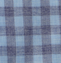 Dandy Life Checkered Flannel Shirt - Blue / Blue