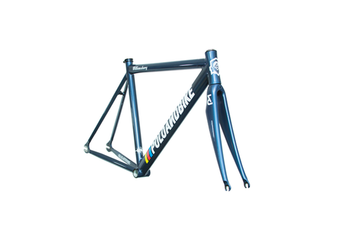 Polo & Bike 2015 Williamsburg Frame Set Blue
