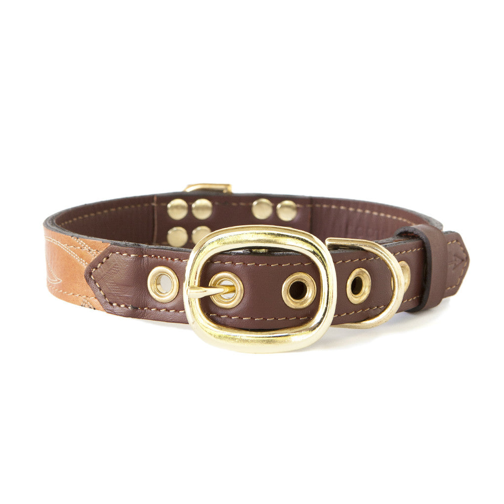 Mahogany Brown Dog Collar With Russet Leather + Ivory Stitching