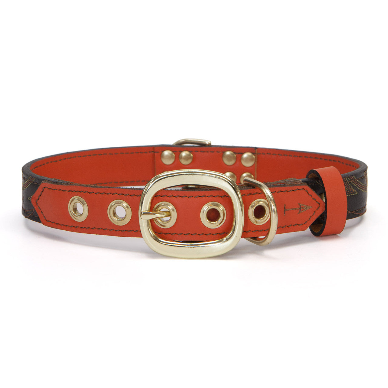 Orange Dog Collar with Dark Brown Leather + Orange Crest Stitching (back view)
