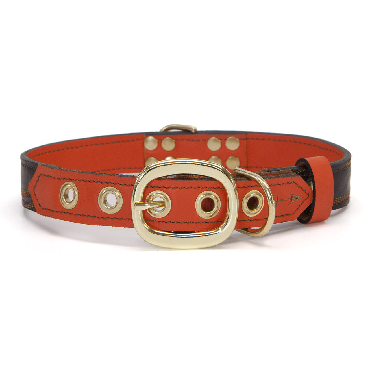 Orange Dog Collar with Medium Brown Leather + Multicolor Stitching (back view)