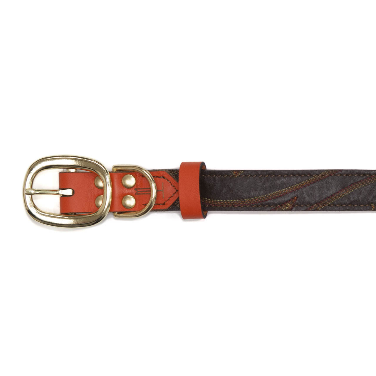 Orange Dog Collar with Medium Brown Leather + Multicolor Stitching (buckle)