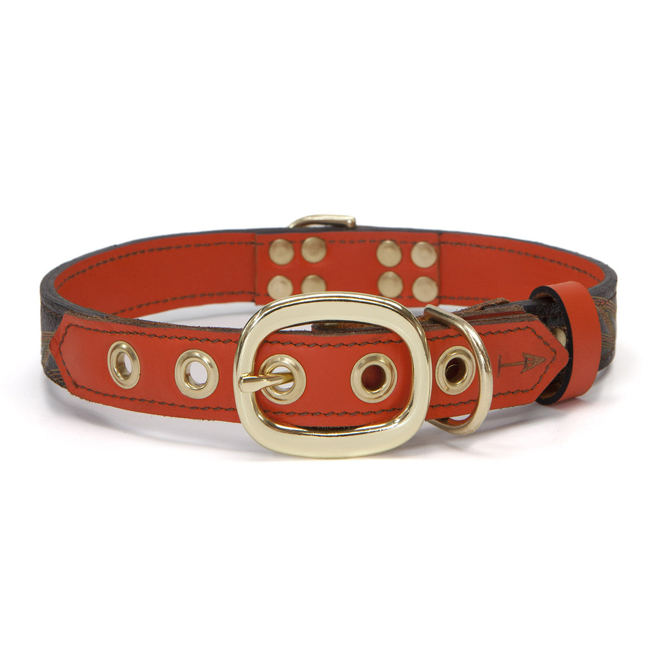 Orange Dog Collar with Brown Leather + Orange Spike Stitching (back view)