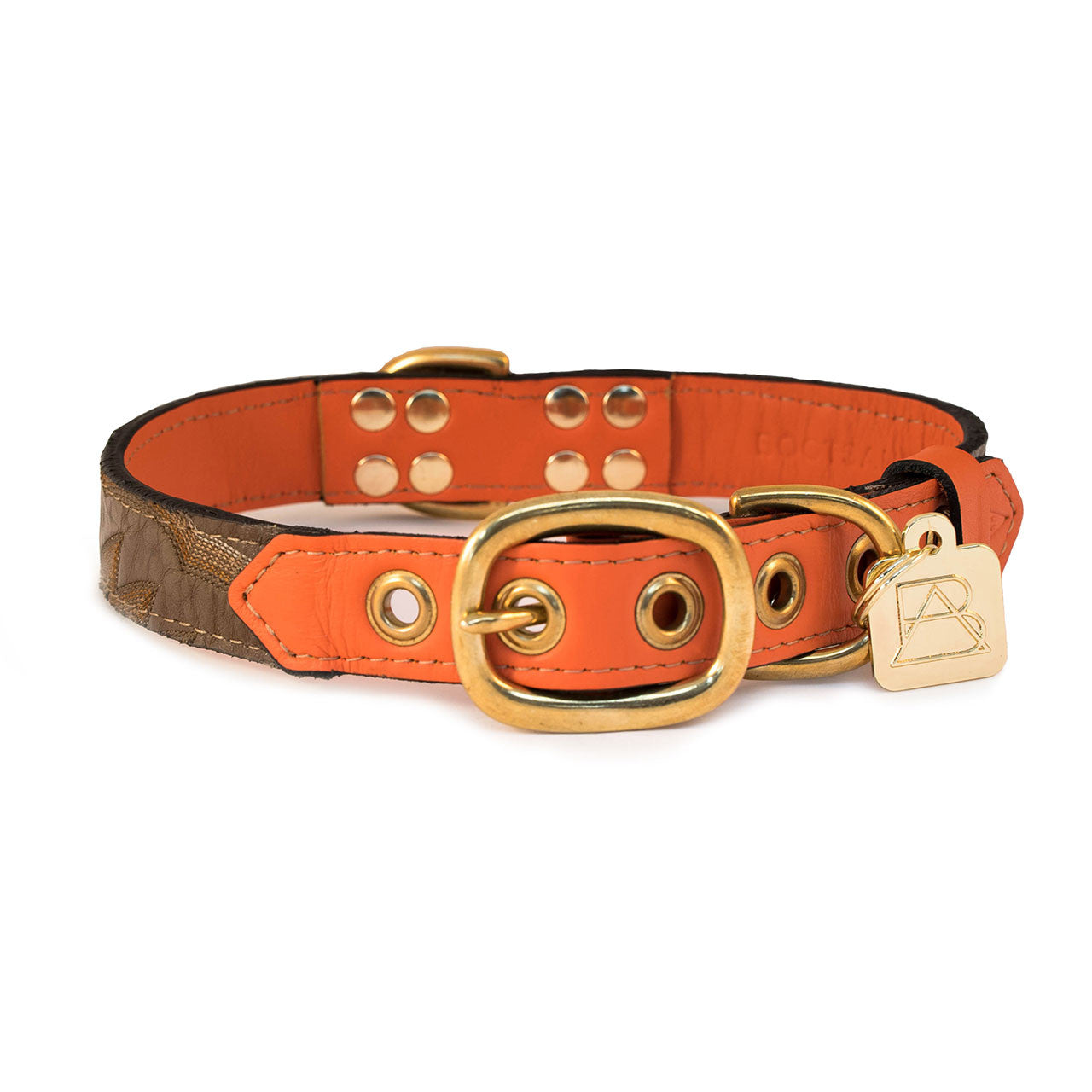 Orange Dog Collar with Light Brown Leather + Multicolor Tan Stitching
