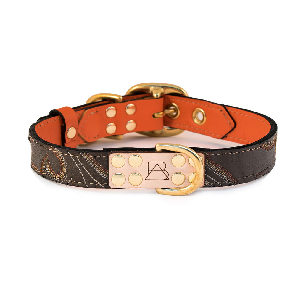 Orange Dog Collar with Chocolate Leather + Orange, Yellow and Ivory Stitching