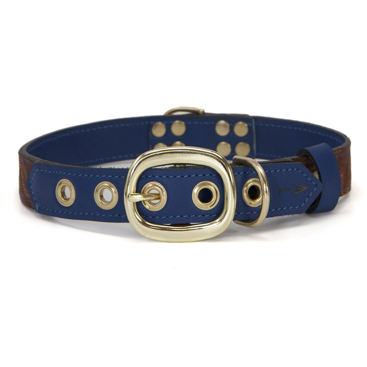 Royal Blue Dog Collar with Brown Leather + Brown/Orange Stitching (back view)