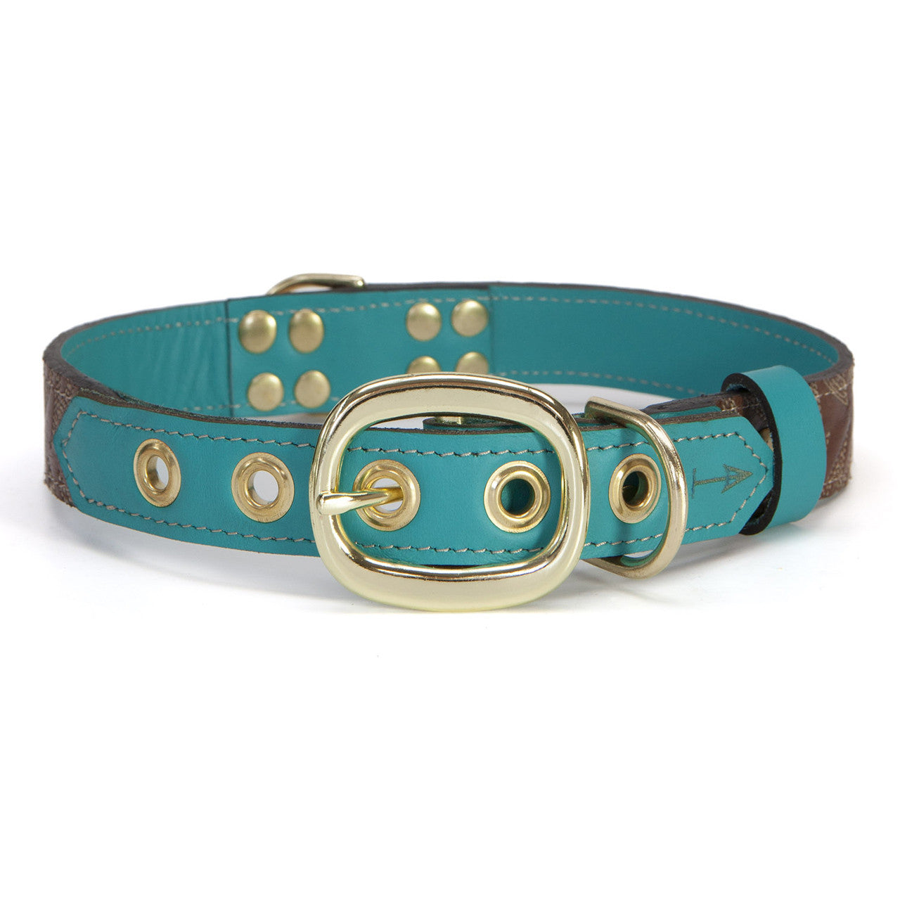 Turquoise Dog Collar with Dark Brown Leather + White Stitching (back view)