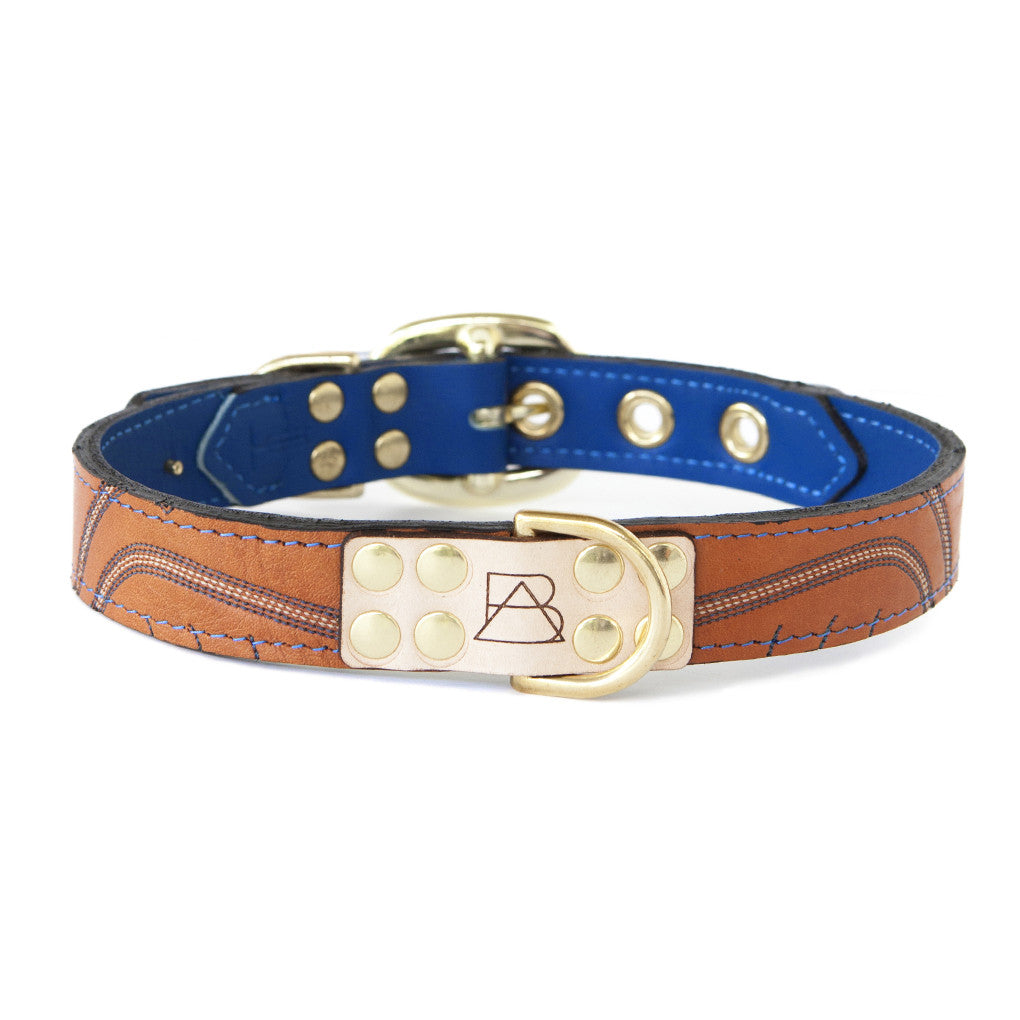 Royal Blue Dog Collar With Orange Leather + Blue/Red/White Stitching