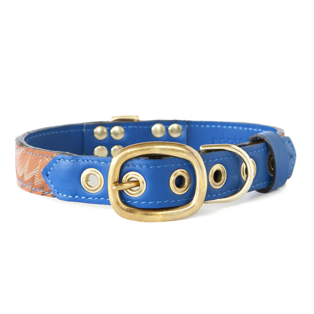 Royal Blue Dog Collar With Tan Leather + Cream/Orange/Brown Stitching