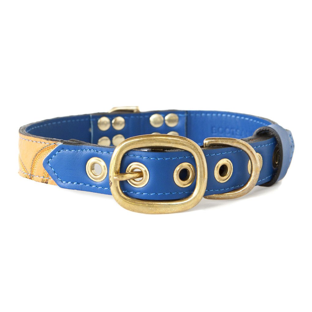 Royal Blue Dog Collar With Golden Leather + Brown/Orange/Yellow Stitching
