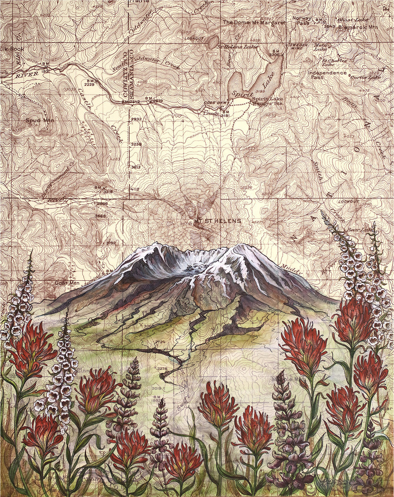 Mt. St. Helens Wildflowers Art Print w/ Mat