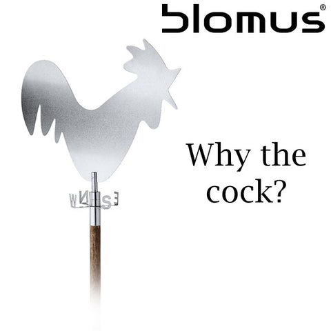 So Why The Cock?