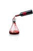 Wine Decanter With Aerator and Pourer