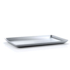 Stainless Steel Tray  15x25 cm/6x10 inches