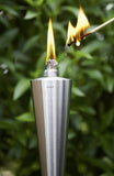 Stainless Steel Outdoor Garden Torch - Cone - Polished + Caps  Set of 3