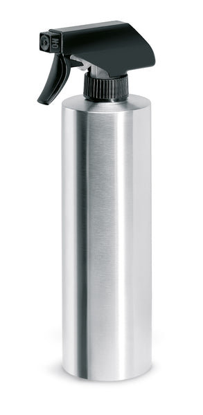 Stainless Steel Spray Bottle - Plant Mister