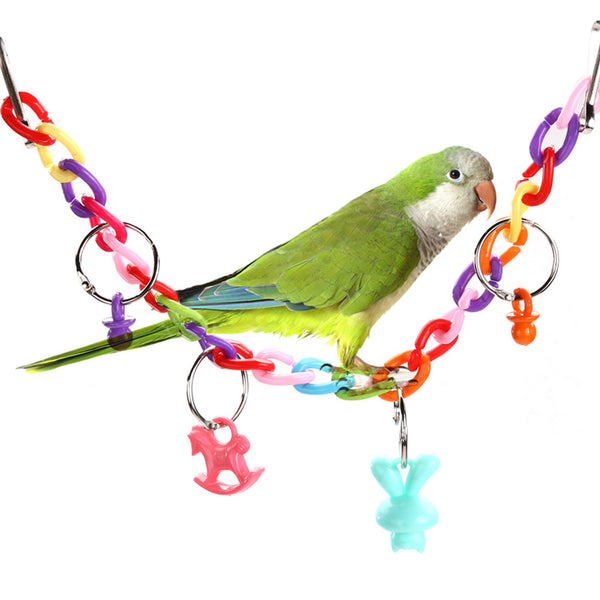 Colorful Bird Chewing Chew Swing