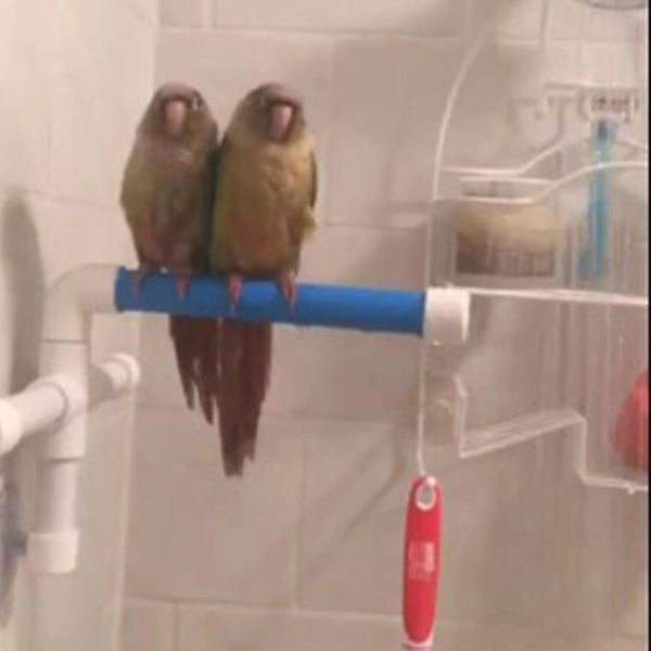 Bath Shower Perch