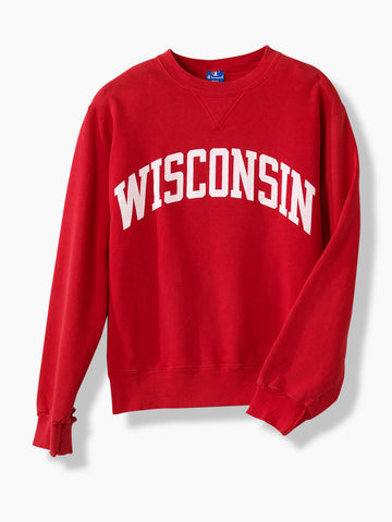 1980's Vintage Champion Wisconsin University Sweater