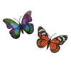 Butterfly Glow-In-The-Dark Magnets