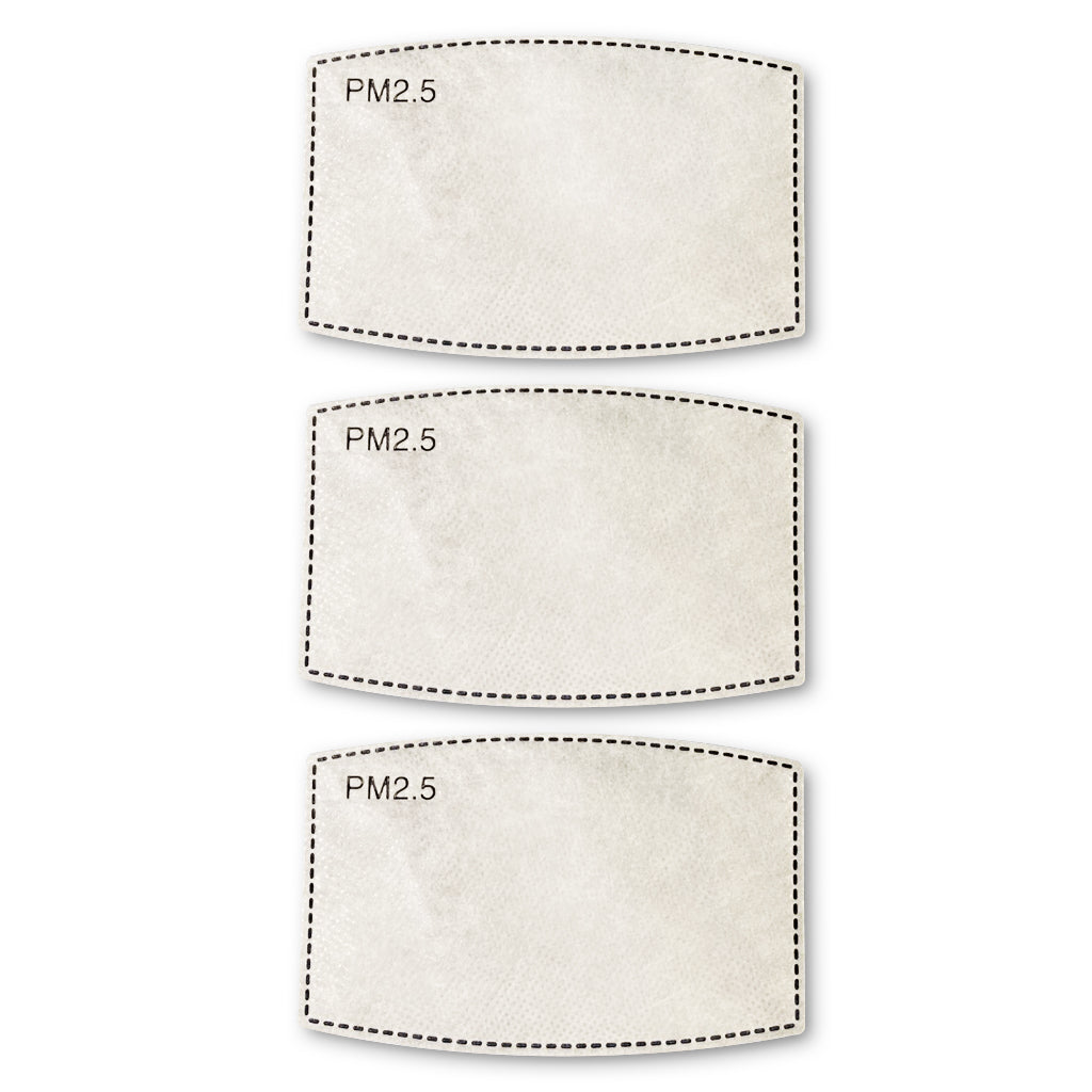 Mask Replacement Filter Set