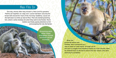 Mosi Musa: A True Tale about a Baby Monkey Raised by His Grandma