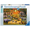 Gathering at the Waterhole 2000pc Puzzle