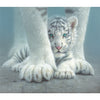White Tiger Cub 550pc Puzzle