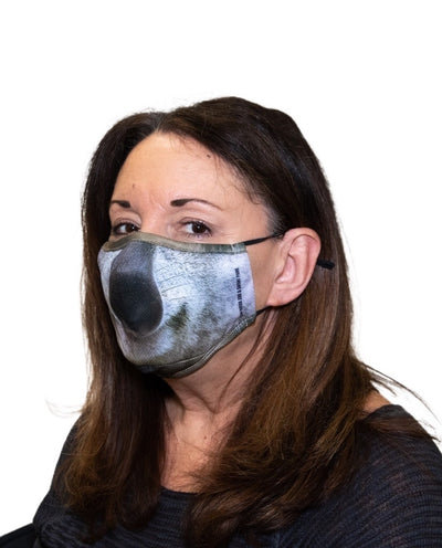 KOALA ADULT FACE MASK