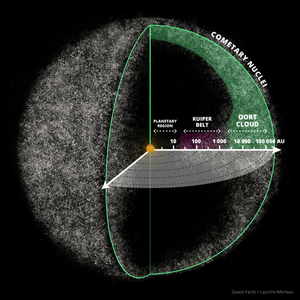 ORIGIN AND DISCOVERY OF THE OORT CLOUD