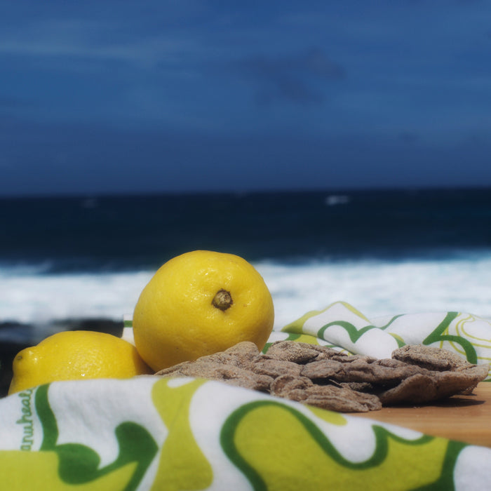 Dried Lemon and fresh lemon ocean background