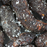 Salted Tamarind - 4.5 oz