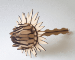 3d Wooden Protea Measures 410mm Tall By 240mm Wide Model Puzzle In 3mm