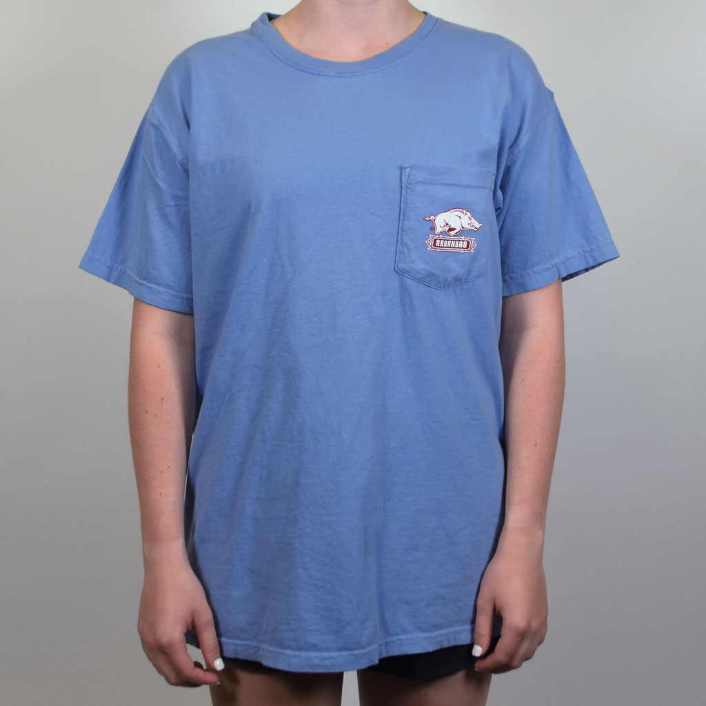 Light Blue university of arkansas razorback baseball t shirt with a hog and baum stadium.