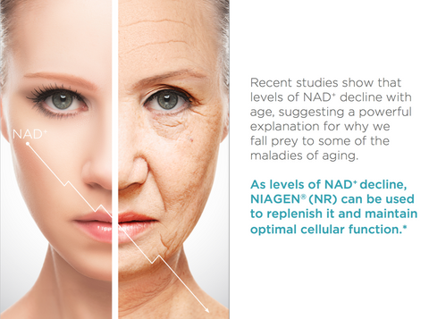 NAD decreases with age - Tru Niagen can replenish it