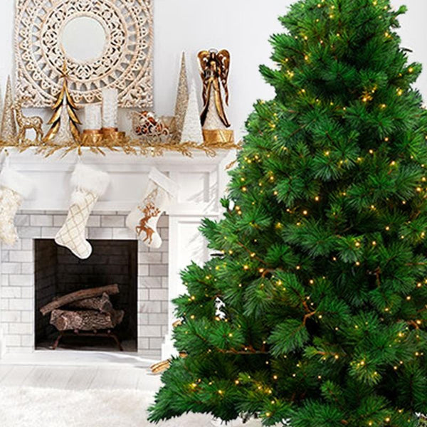7ft NATURAL ROYAL PINE TREE PRE-LIT WITH WARM WHITE LED LIGHTS
