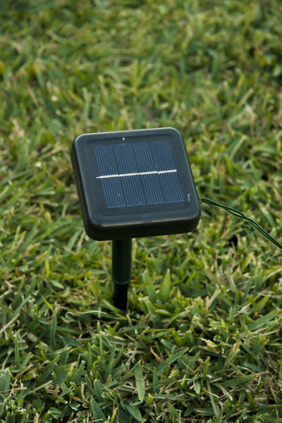 Solar LED PVC Yard Light - Christmas World