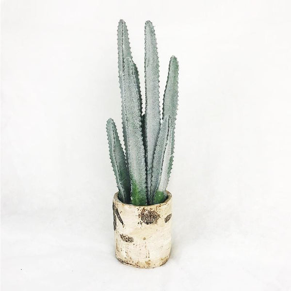 Green and White Ceramic Cactus Pot