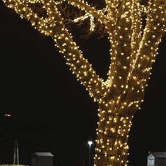 100 LED Fairy Lights -  Warm White - 10 meters