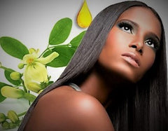 Beautiful Hair and Skin with Moringa