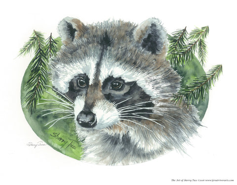 The Art of Sherry Tuss: Coon
