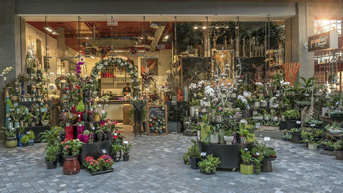Poppies floral art victoria bcs favourite florist come into our beautiful flower shop located in the impressive atrium building in downtown victoria parking is 1st hour free in all the city parkades mightylinksfo
